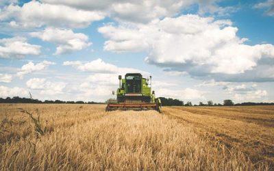 Agronegócio brasileiro continua segurando nossa balança comercial
